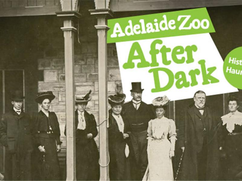 Adelaide Zoo After Dark